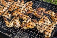 Гриль цыпленка с овощами Стоковое фото RF