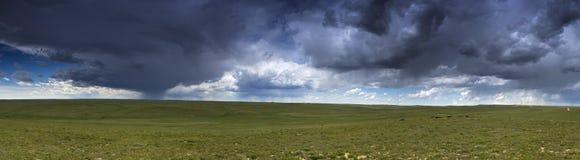 Гроза прерии панорамная Стоковые Фото