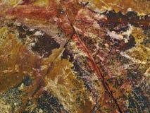 Грубая и зернистая красочная каменная текстура стоковые фото