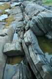 грубая каменная структура, живая природа северная Стоковое Изображение RF
