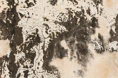 грубая каменная текстура Стоковые Изображения