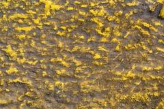 Грубая покрашенная на предпосылке текстуры стены и пола цемента стоковая фотография rf