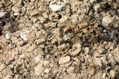 Грубая предпосылка текстуры сухой почвы Стоковое фото RF