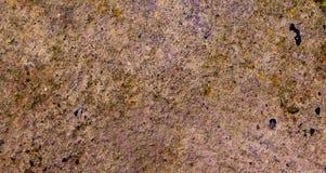 Грубая текстура земли Стоковые Изображения