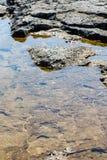 Грубая текстура утеса от острова Портленда трясет Стоковое Изображение RF