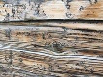 Грубая текстурированная деревянная поверхность Стоковые Изображения