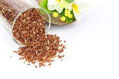 Грубое зерно риса стоковая фотография
