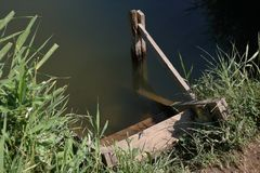 Грубые деревянные лестницы при поручни сделанные доск на береге пруда стоковые фотографии rf