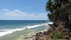Грубый пляж острова Стоковые Фото