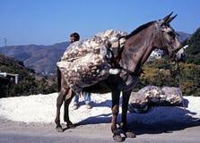 Гружёный осел на дороге горы, Испании стоковое изображение