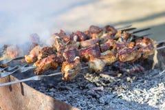 Грузинская традиционная еда Mtsvadi Стоковые Изображения