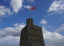 Грузинский флаг башни стоковое изображение rf