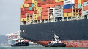 Грузовой корабль MSC АРИАН входя в порт Окленд Стоковая Фотография RF