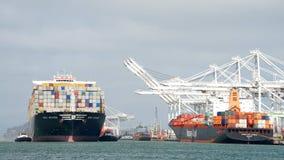 Грузовой корабль MSC АРИАН входя в порт Окленд Стоковое Изображение RF