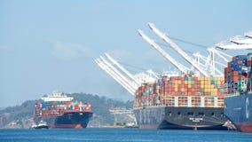 Грузовой корабль NAVARINO входя в порт Окленд Стоковая Фотография RF