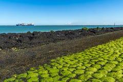 Грузовой корабль с побережья Стоковые Фотографии RF