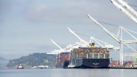 Грузовой корабль MSC ТРИЕСТ приезжая на порт Окленд Стоковые Фотографии RF