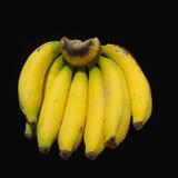 Группа банана Стоковое Изображение RF