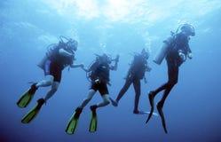 группа водолаза Стоковые Фотографии RF