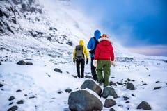 Группа в составе альпинисты в горах снега Стоковые Фотографии RF
