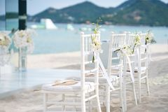 Группа в составе белые стулья на подготовке свадьбы на пляже, конусы chiavari лепестков роз - заднего взгляда со стороны Стоковые Изображения RF