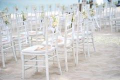Группа в составе белые стулья на подготовке свадьбы на пляже, конусы chiavari лепестков роз - заднего взгляда со стороны Стоковые Фото