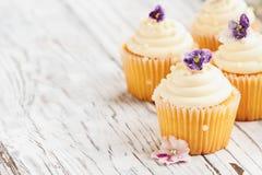 Группа в составе ванильные пирожные с цветками покрытыми сахаром стоковое изображение rf