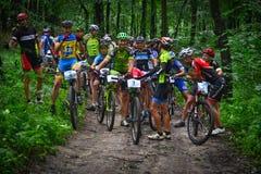 Группа в составе велосипедисты MTB состязаясь в лесе Стоковое Изображение RF