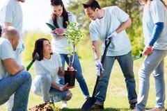 Группа в составе волонтеры засаживая дерево в парке Стоковое Изображение RF
