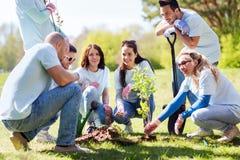 Группа в составе волонтеры засаживая дерево в парке Стоковое фото RF