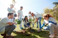 Группа в составе волонтеры засаживая дерево в парке Стоковая Фотография