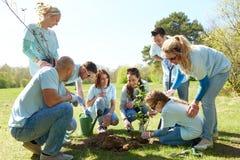 Группа в составе волонтеры засаживая дерево в парке Стоковая Фотография RF
