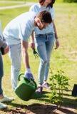 Группа в составе волонтеры засаживая и моча дерево Стоковое Фото
