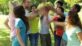 Группа в составе вскользь молодые друзья кладя их руки совместно сток-видео