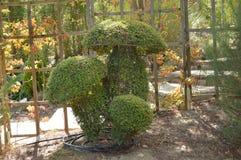 Группа в составе гигантские грибы воссозданные в скульптуре папоротника стоковое фото