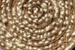 Группа в составе гнезди коконов silk глиста Стоковые Изображения RF