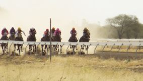 Группа в составе гонщики лошади в замедленном движении акции видеоматериалы
