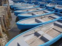 Группа в составе голубой rowboat на реке Стоковые Изображения