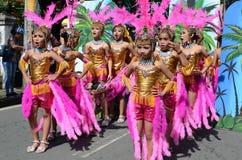 Группа в составе девушки в красочных костюмах кокоса участвовала в танцах улицы Стоковое фото RF