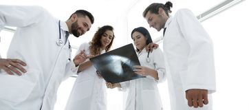 Группа в составе доктора обсуждая рентгеновский снимок Стоковое фото RF
