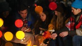 Группа в составе друзья имея полезного время работы огнем в древесинах Жарить разные виды еды сток-видео