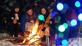 Группа в составе друзья имея полезного время работы огнем в древесинах Жарить разные виды еды Яркие красочные света акции видеоматериалы