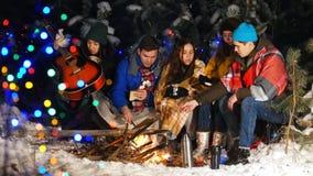 Группа в составе друзья имея полезного время работы огнем в древесинах видеоматериал