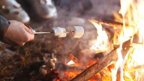 Группа в составе друзья имея полезного время работы огнем в древесинах Жарить зефиры и грибы акции видеоматериалы