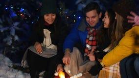Группа в составе друзья в лесе зимы имея полезного время работы Сидеть около костра Молодой человек играя гитару и каждого видеоматериал