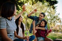 Группа в составе друзья наслаждаясь на пикнике Стоковая Фотография