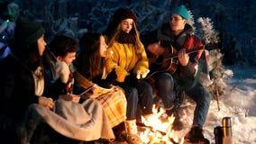 Группа в составе друзья сидя в лесе зимы огнем Гитара удерживания молодого человека видеоматериал
