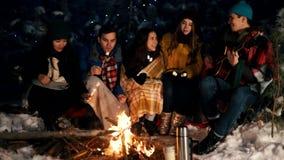 Группа в составе друзья сидя в лесе зимы огнем, есть зефиры и поя песни сток-видео
