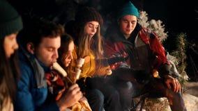 Группа в составе друзья сидя в лесе зимы огнем Жарить разные виды еды акции видеоматериалы