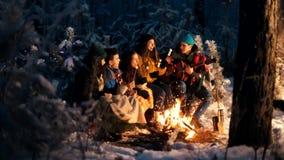 Группа в составе друзья сидя в лесе зимы огнем и есть зефиры Гитара удерживания молодого человека акции видеоматериалы